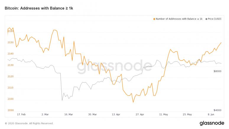 glassnode-studio_bitcoin-addresses-with-balance-%e2%89%a5-1-k